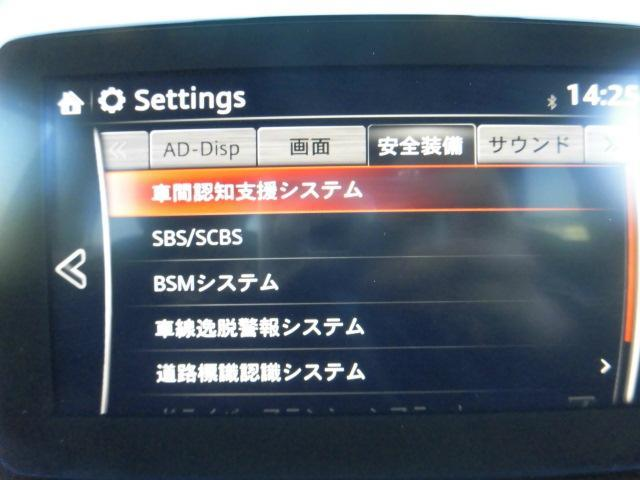 XD プロアクティブ 純正ナビ TV(14枚目)