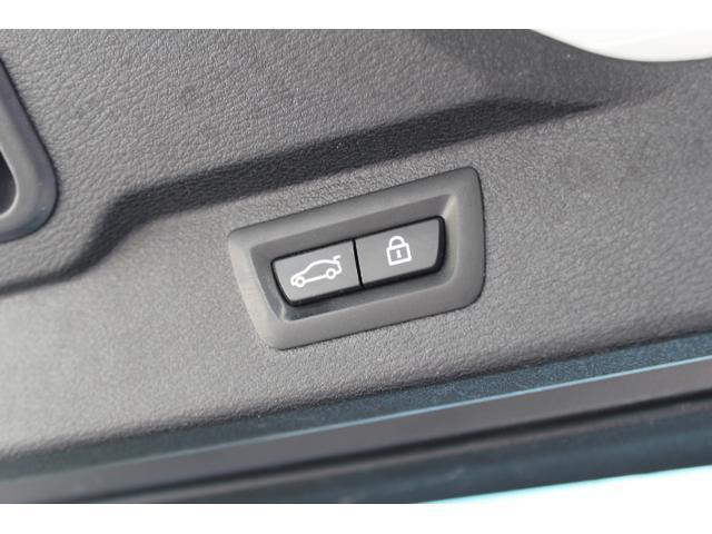 xDrive 35d Mスポーツ/純正ナビ/黒革/サンルーフ(11枚目)