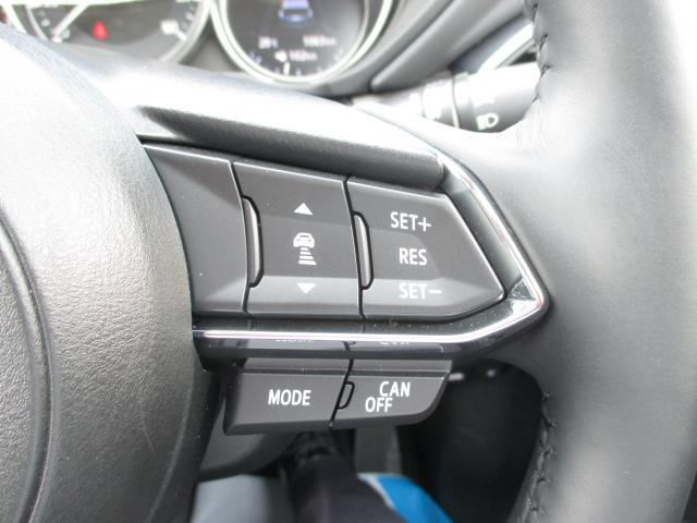 25S Lpkg Bose 19インチアルミ AWD(18枚目)