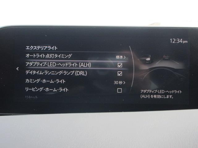 20S L-pkg デモカーアップ 360°ビューモニター(7枚目)