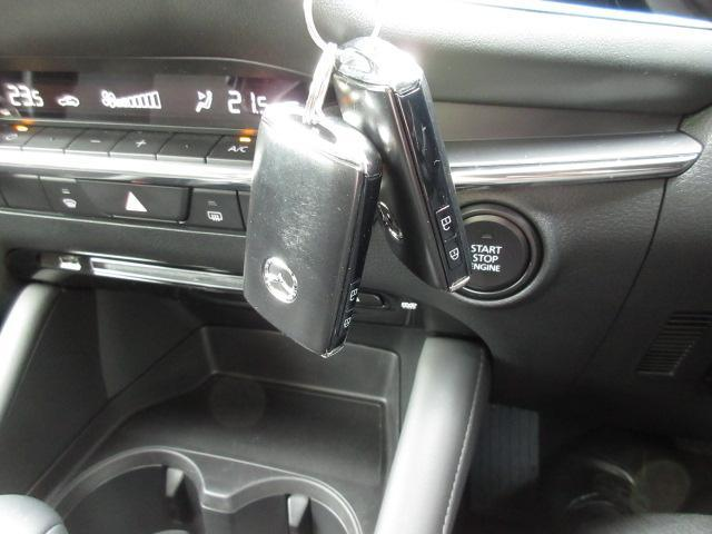 15Sツーリング 衝突被害軽減システム アダプティブクルーズコントロール オートマチックハイビーム バックカメラ オートライト LEDヘッドランプ ETC Bluetooth ワンオーナー(20枚目)