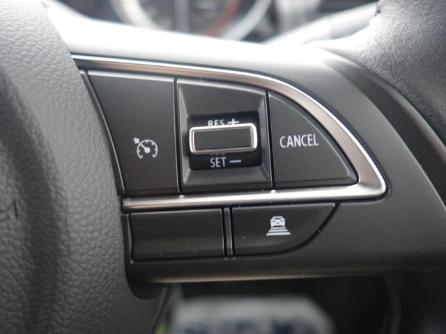 XGリミテッド DセンサーブレーキS クルコン 新車保証継承(32枚目)