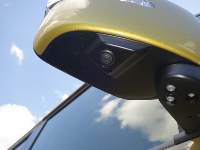 バンディットHYBRIDMV2型両側電スラ全方位モニ用カメP(49枚目)