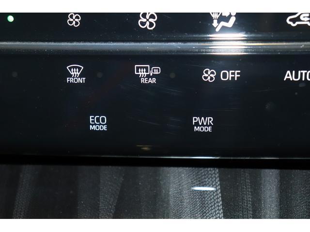 プレミアム パイオニアフルセグナビ ETC スマートキー LEDライト ワンオーナー(24枚目)
