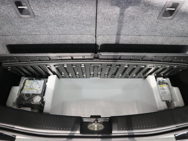 スティングレー HYBRID X デュアルブレーキサポート付(19枚目)
