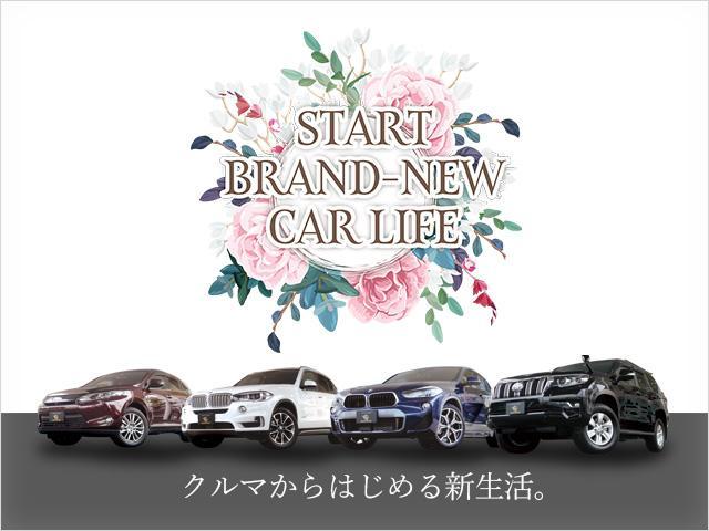 xDrive 35i xライン 4WD サンルーフ 純ナビ(3枚目)