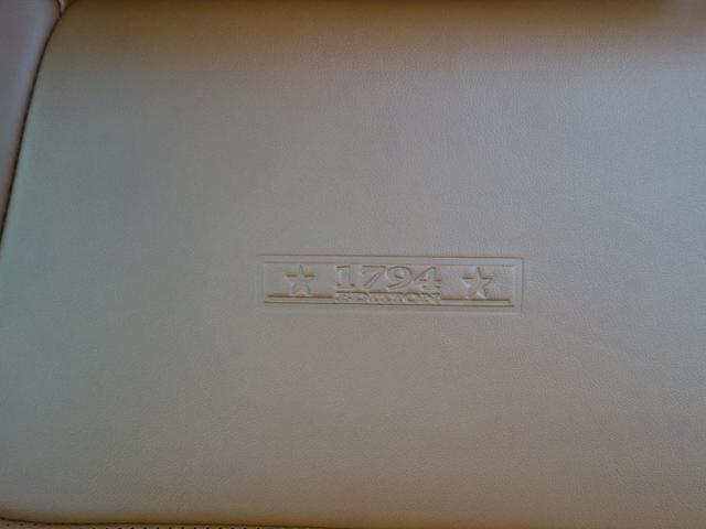 C-MAX1794EDハニーDフルコンプレッドロックレザー(14枚目)