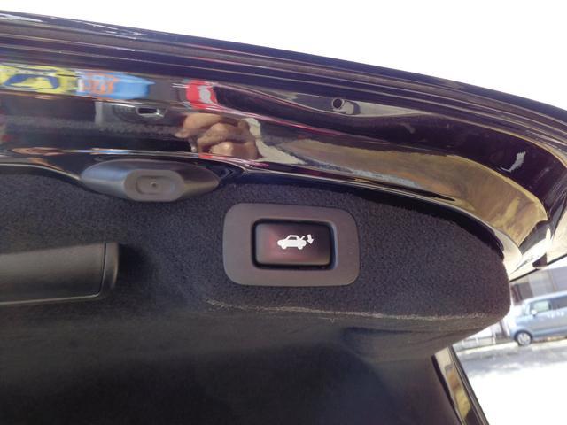 LS600hバージョンS IパッケージSR黒革HDDマクレビ(20枚目)