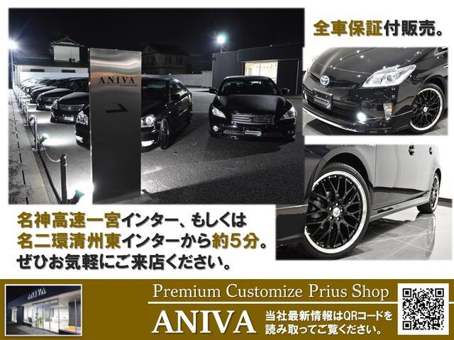 250VIP 黒革エアーシート フルエアロ ウインカミラー(28枚目)