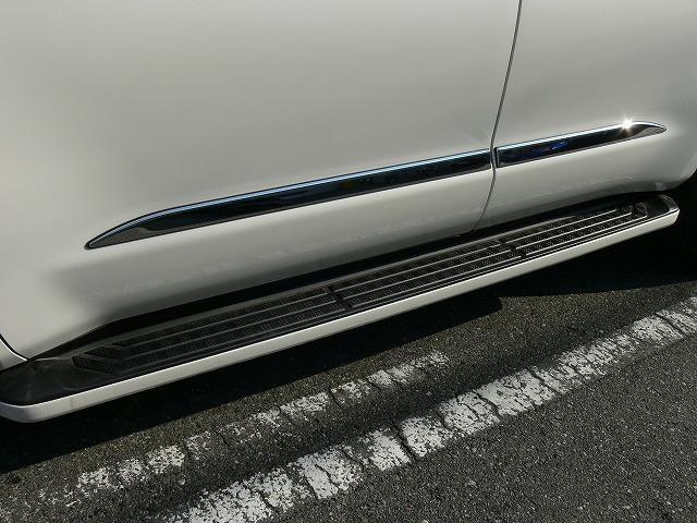 プラチナム 4WD 2019yモデル LEDライト TSS(19枚目)