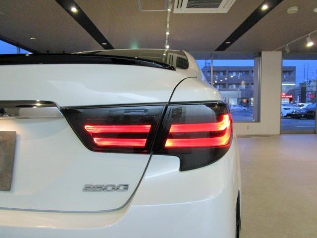 250G-S G's仕様 流れるウィンカーH テイン車高調(8枚目)