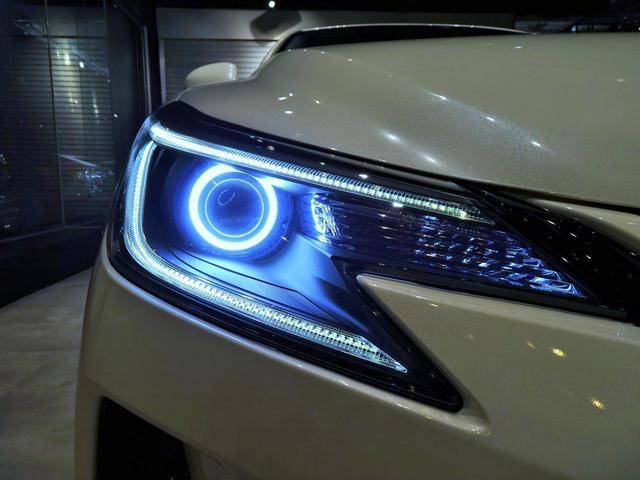 250G リラックスセレクション フルG's仕様 インナーブラック加工イカリング付ヘッドライト&中期テールライト 新品20インチホイール&タイヤ 新品G'sパーツ(7枚目)