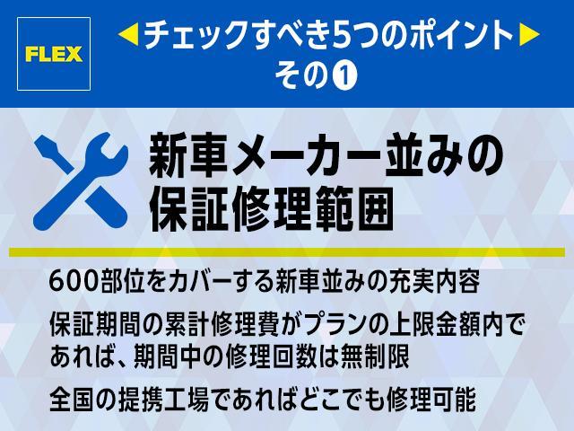 新車未登録・寒冷地仕様・サイドバイザー・フロアマット(17枚目)