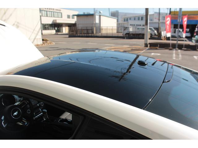 V8 GT プレミアム ブラックトップ ビッグブレーキ(20枚目)