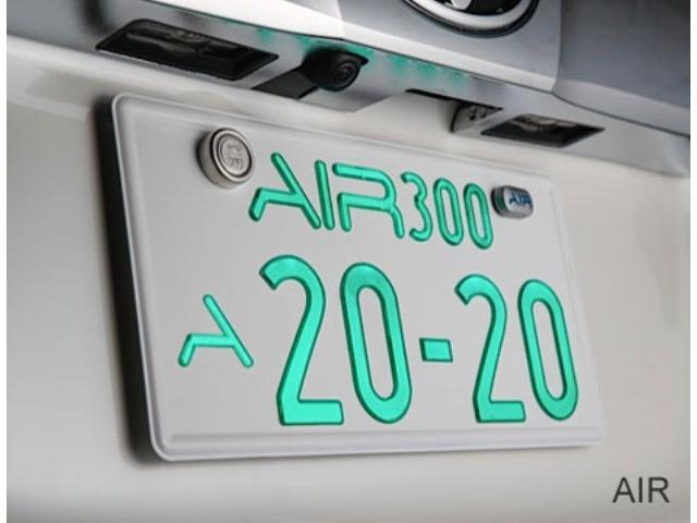 2.5S タイプゴールドII モデリスタ ハーフレザー AC100Vコンセント 3眼 シーケンシャル パワーバックドア ALPINEナビ対応 バックカメラ(30枚目)