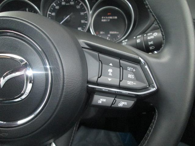 XD Lパッケージ 衝突軽減ブレーキシステム 誤発進制御 レーダークルーズ アクティブLEDヘットライト レーンキープアシスト(17枚目)