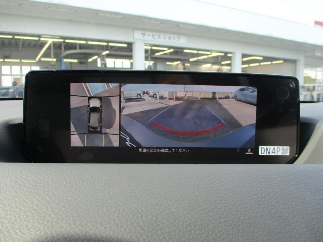 ベースグレード 衝突被害軽減システム アダプティブクルーズコントロール 全周囲カメラ バックカメラ オートライト LEDヘッドランプ ETC Bluetooth ワンオーナー(14枚目)