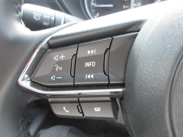 XD プロアクティブ 衝突被害軽減システム 全周囲カメラ オートマチックハイビーム 4WD バックカメラ オートクルーズコントロール オートライト LEDヘッドランプ ETC Bluetooth ワンオーナー(13枚目)