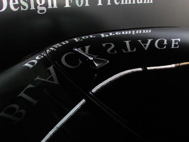 BEASTスタイリング Technopia19AW 車高調(16枚目)