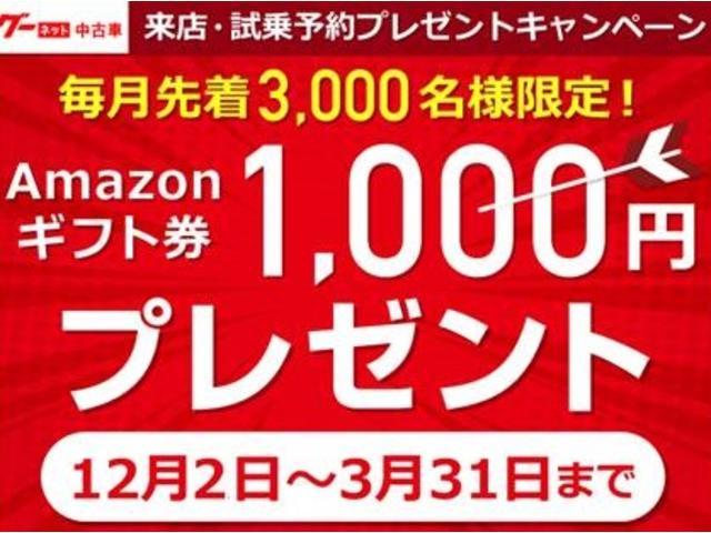 毎月先着3000名様限定!!Amazonギフト1000円分プレゼント!!