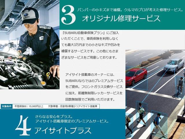 2.0i-L アイサイト ナビ カメラ(49枚目)