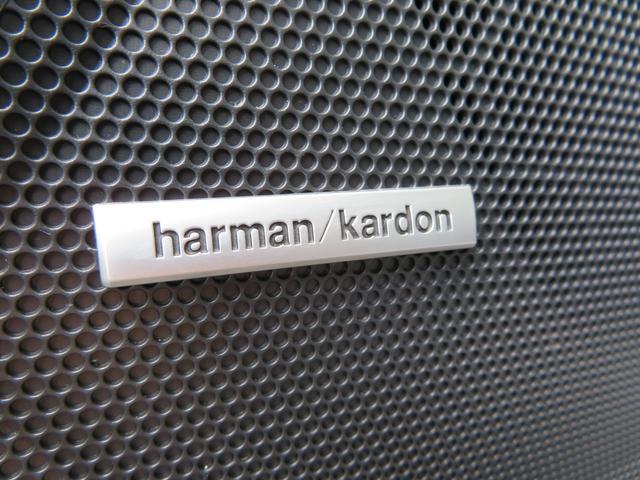 リミテッド 1オーナー 黒革シート ハーマンカードンSDナビTV バックカメラ パワーバックドア アイサイト オーバーフェンダー ハイビームアシスト スバルリヤビーグルディテクション パワーシート シートヒーター(41枚目)