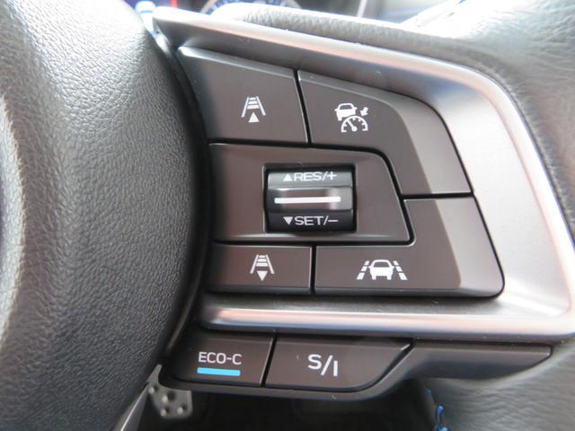 アドバンス 1オーナー 新品1インチリフトアップ 新品BFグッドリッチオールテレーンタイヤ 新品THULE製ルーフラック 8インチSDナビTV バック&サイドカメラ LEDアクセサリーライナー STIリヤスポ(35枚目)
