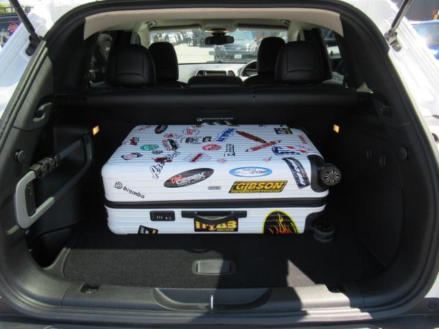 トレイルホーク 純正ナビ フルセグ ハーフ革 ETC 4WD(16枚目)