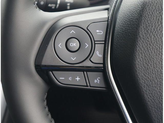 G レザーパッケージ 本革シート ディスプレイオーディオ LEDヘッド 衝突軽減 レーンキープ パワーバックドア レーダークルーズ パワーシート シートメモリー プッシュスタート 電動パーキング プリクラッシュセーフティ(12枚目)