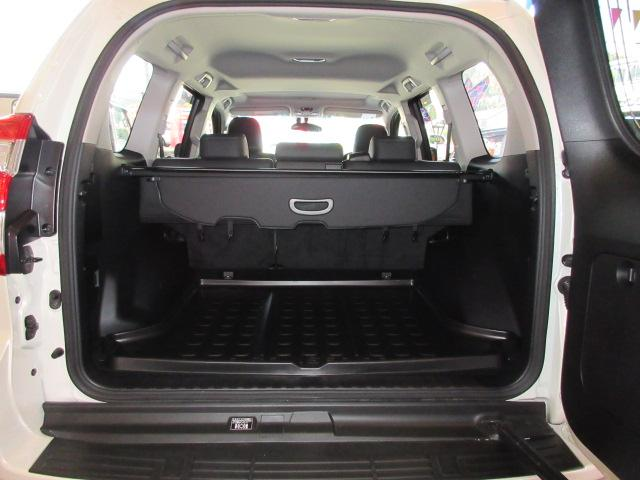 TX Lパッケージ 4WD(7枚目)