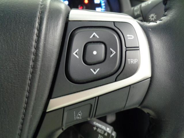 プレミアム メモリーナビ フルセグTV バックモニター ETC オートクルーズ LEDヘッドライト 電動リアゲート(10枚目)