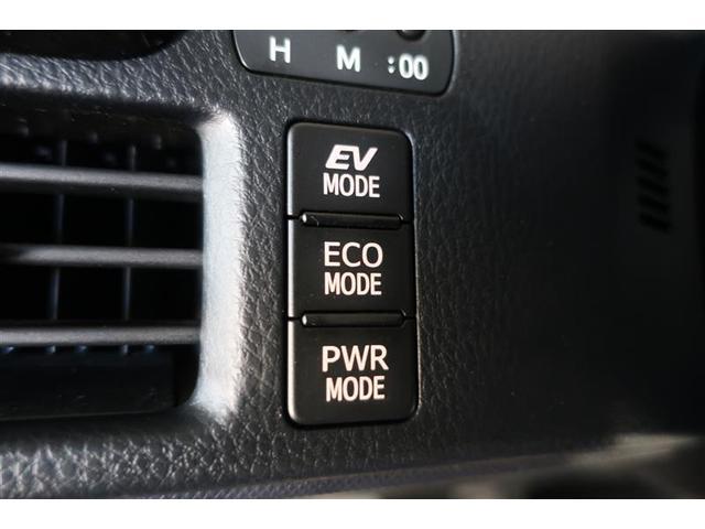 ZS サポカー 社外18インチアルミ LEDヘッドライト 片側電動スライドドア(12枚目)
