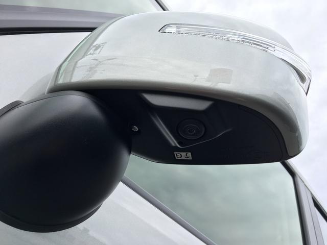 カスタムHYBRID XSターボ2型 両側電動ドア 全方位C(31枚目)