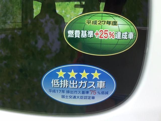 DX ハイルーフ/キーレス/プライバシーガラス 両側スライドドア(18枚目)