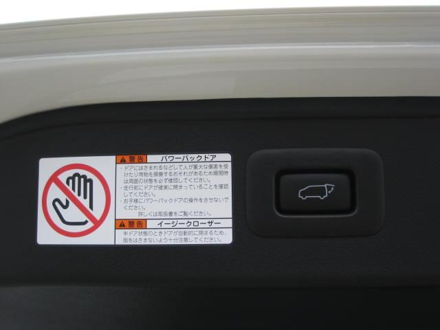 エグゼクティブラウンジ4WDプリクラWSR黒革エアロ20AW(17枚目)