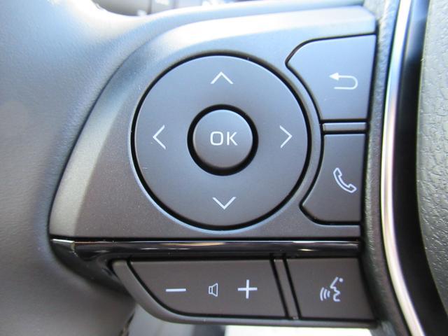 S ディスプレイオーディオ レーダークルーズコントロール バックカメラ クリアランスソナー トヨタセーフティセンス USB端子 LEDヘッドライト オートハイビーム オートライト ステアリングリモコン(48枚目)