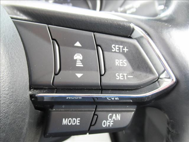 20S PROACTIVE 純正コネクトナビ フルセグTV レーダークルーズコントロール  衝突軽減ブレーキ クリアランスソナー BSM ETC サイドバックカメラ ステアリングリモコン LEDヘッド アイドリングストップ(8枚目)
