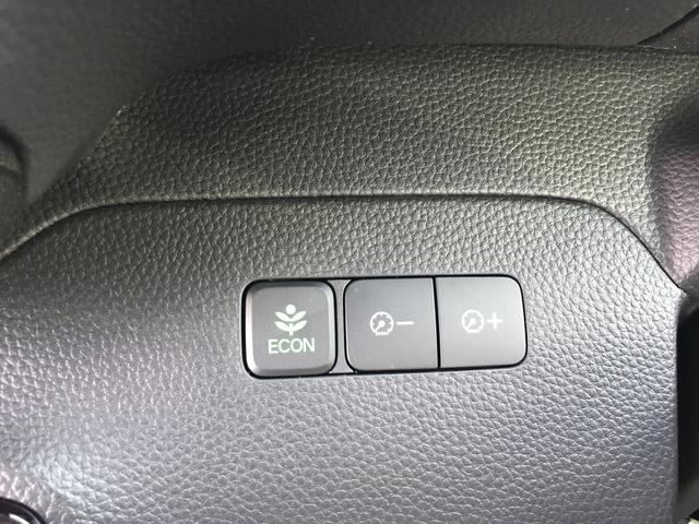 G・Lホンダセンシング 片側電動スライド 届出済未使用車(10枚目)