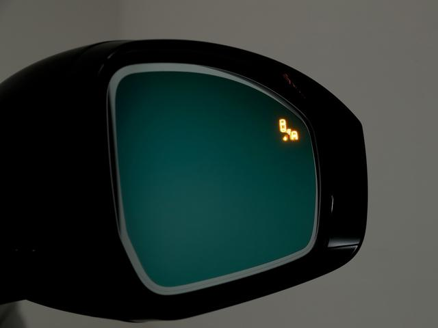 ヴォーグ 3.0 ディーゼルターボ ブラックパック(9枚目)