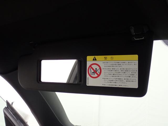 デザイン ターボ SDナビ TV バックカメラ オートクルーズコントロール HID キーレスエントリー 盗難防止システム(34枚目)