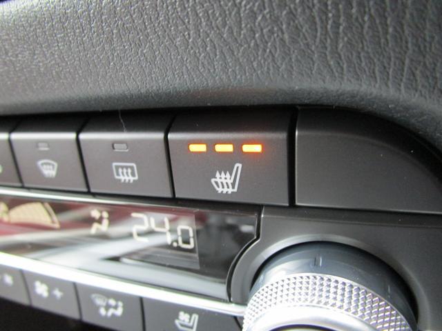 XD 100周年特別記念車 赤レザーシート 電動リアゲート ナビTVバックカメラ BOSEサウンド 360°ビューモニター 専用アルミ 専用フロアマット 100周年記念プレート(11枚目)