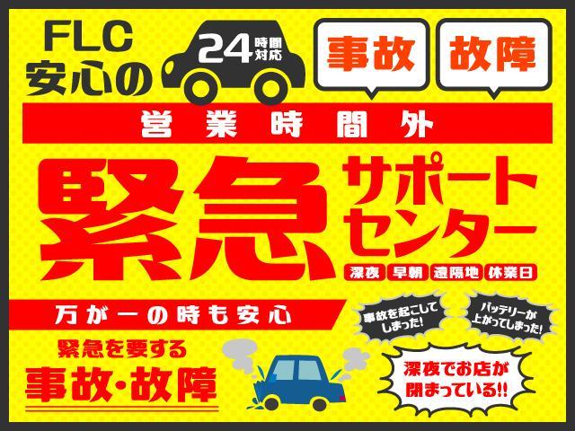 G SAIII 届出済未使用車(20枚目)