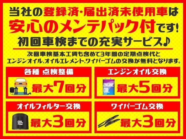 Gメイクアップリミテッド SAIII 届出済未使用車(2枚目)