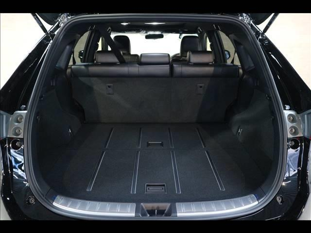 エレガンス 新車未登録 新品10型ナビTV バックカメラ ETC クリアランスソナー 衝突軽減  レーダークルーズ パワーシート AC100V スマートキー LED(18枚目)