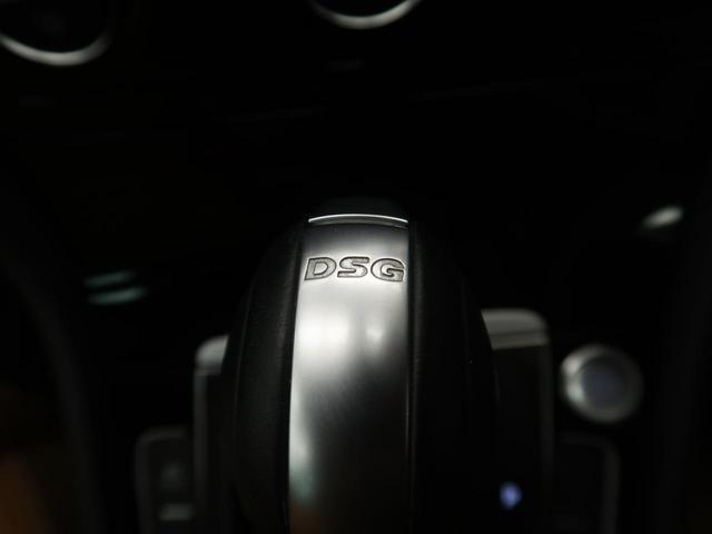ディナウディオエディション 1オーナー.特別仕様車.レザーシート(47枚目)