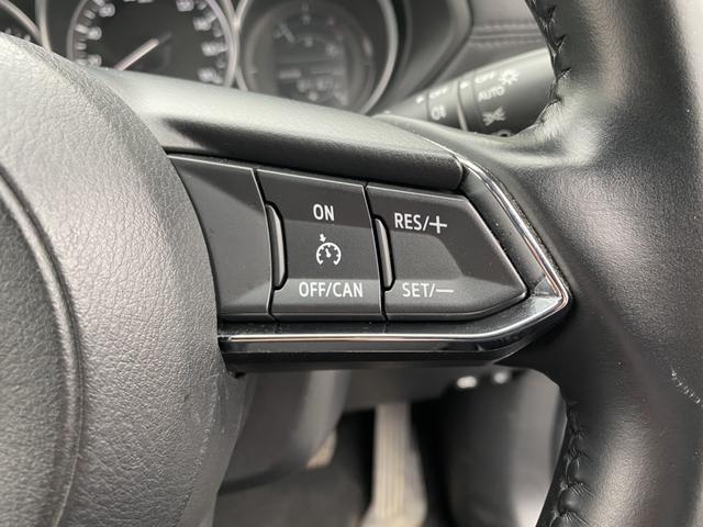 XD 4WD ディーゼル 衝突軽減 レーンアシスト クルコン アイスト Cセンサー 純正メモリーナビ フルセグ S&Bカメラ LEDヘッド リヤフォグ ウインカーミラー スマートキー 純正17AW ETC(26枚目)
