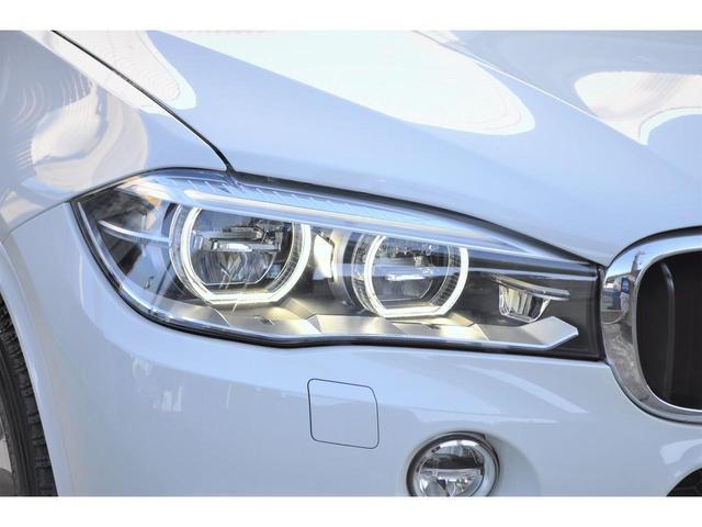 xDrive 35d MスポーツHDDナビ黒革SR20AW(10枚目)