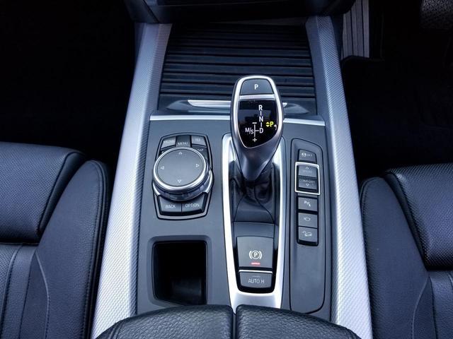 xDrive 35d MスポーツHDDナビ黒革SR20AW(17枚目)