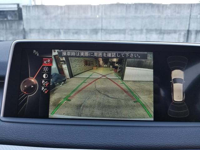 xDrive 35d MスポーツHDDナビ黒革SR20AW(19枚目)