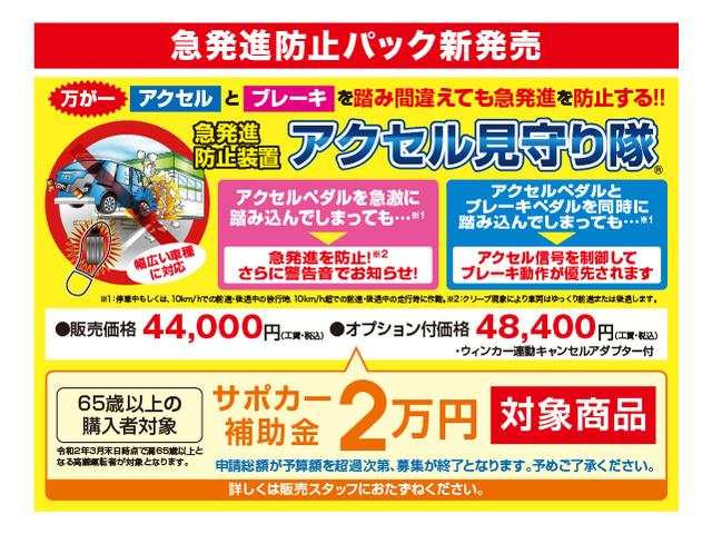 1.0X Lパッケージ・キリリ(28枚目)